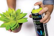 FloraLife®Aqua Color Spray