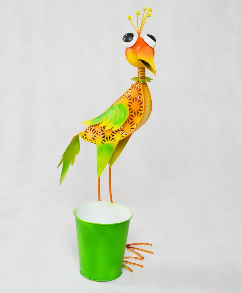 velký pták přísavka